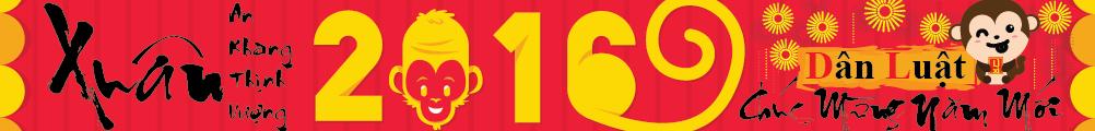 DanLuat 2015